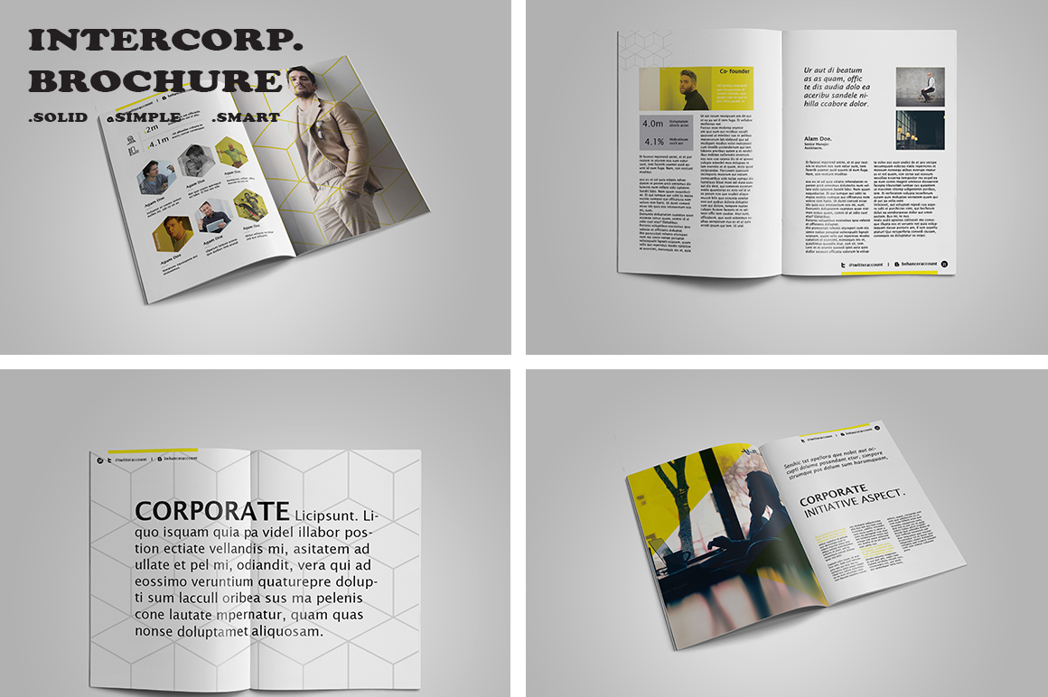 Intercorp Brochure Template example image 2