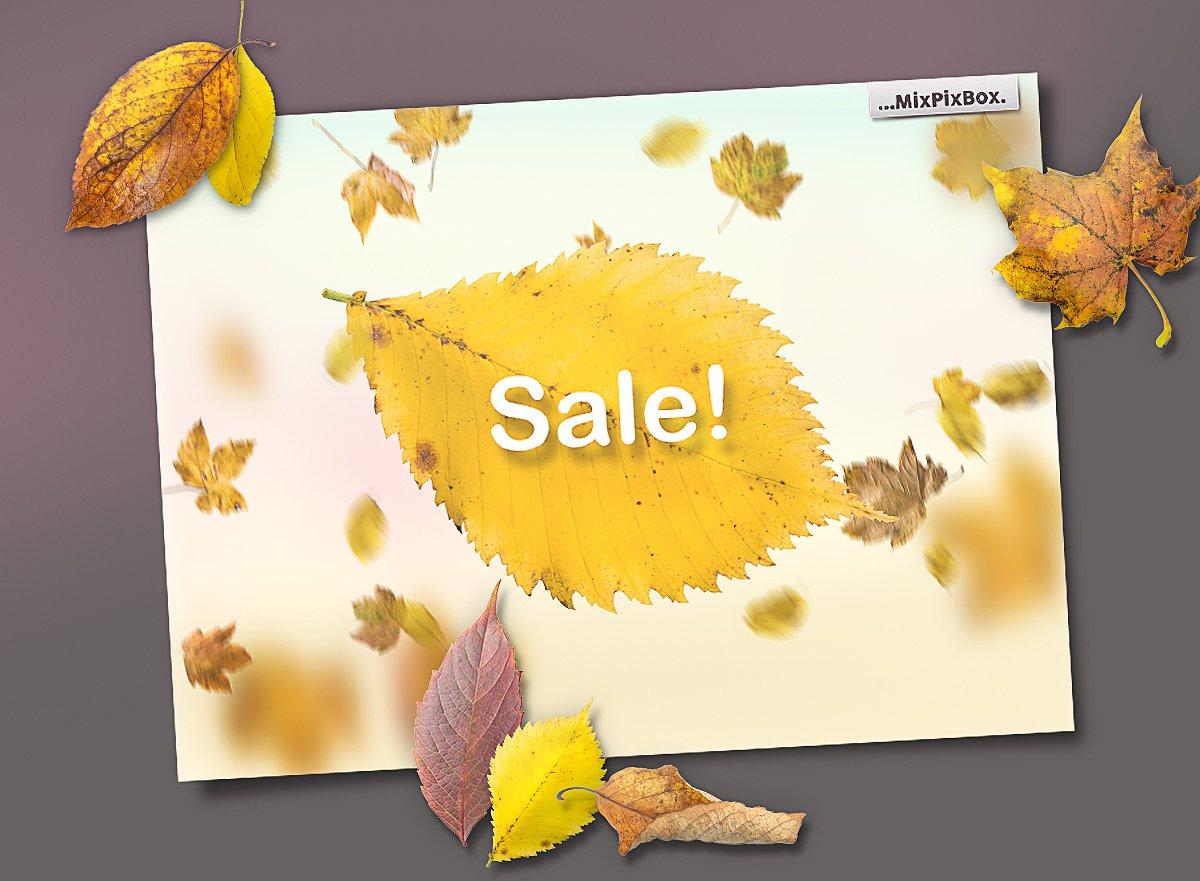 50 Autumn Leaves Overlays example image 7