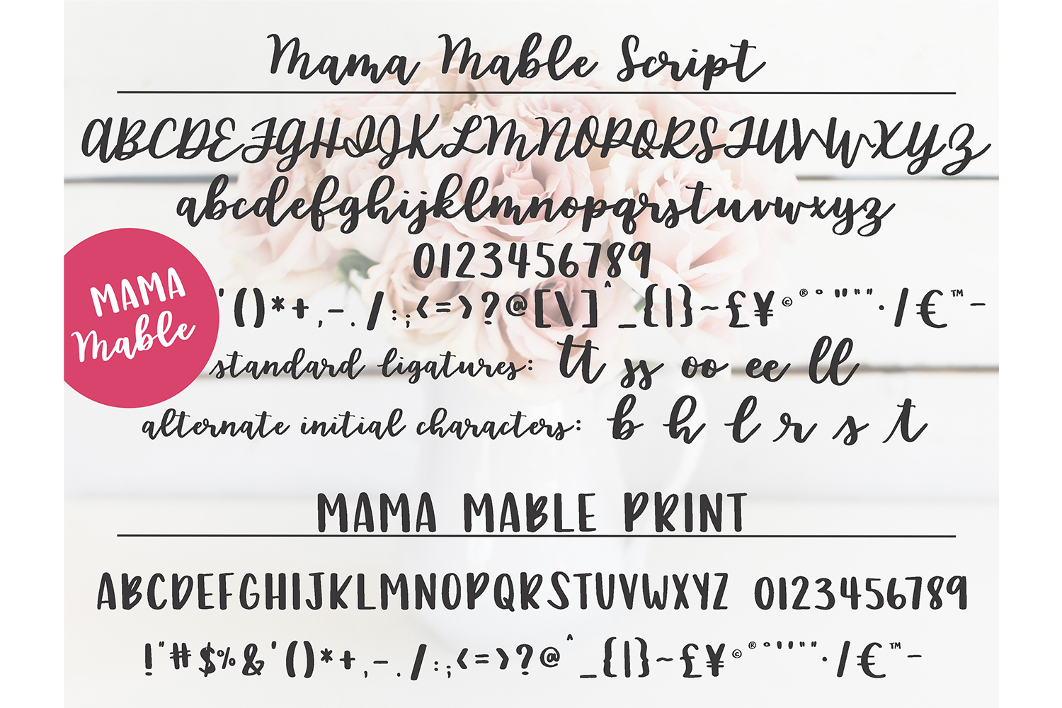 Handwritten Fonts bundle example image 3