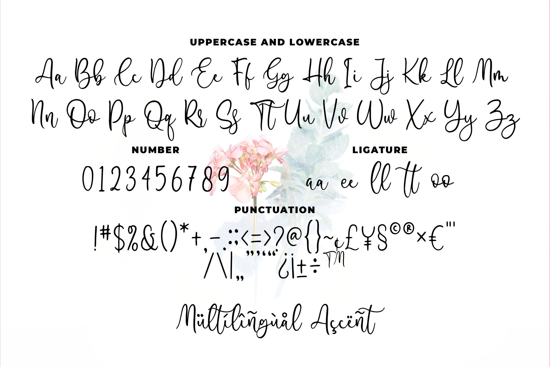 Famella - Modern Calligraphy example image 4