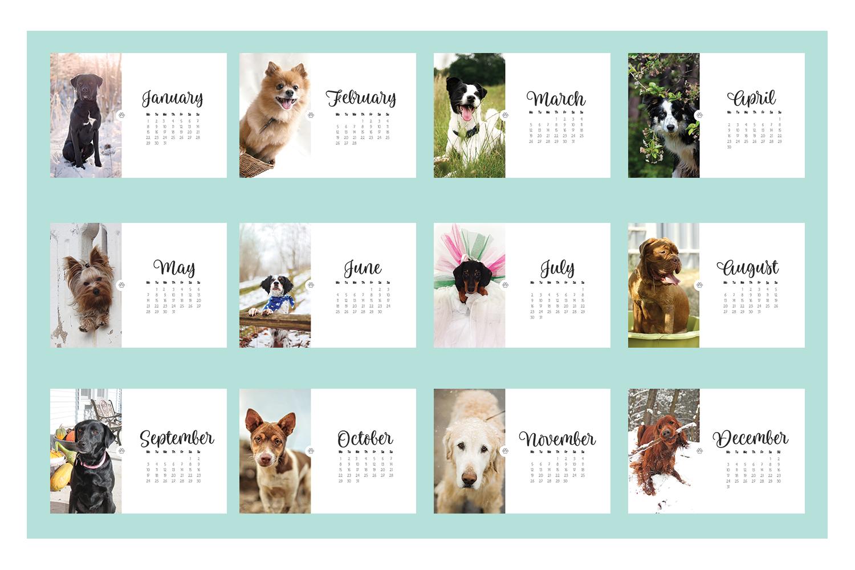 Dog Calendar 2018  example image 2
