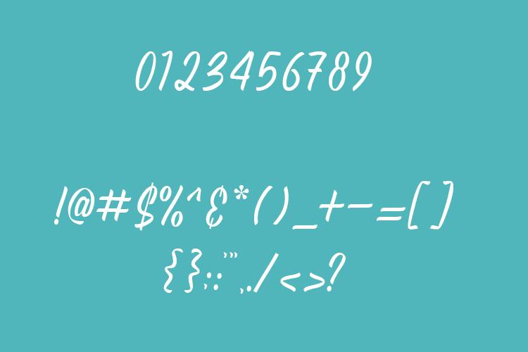 Agatha - Script Font example image 8