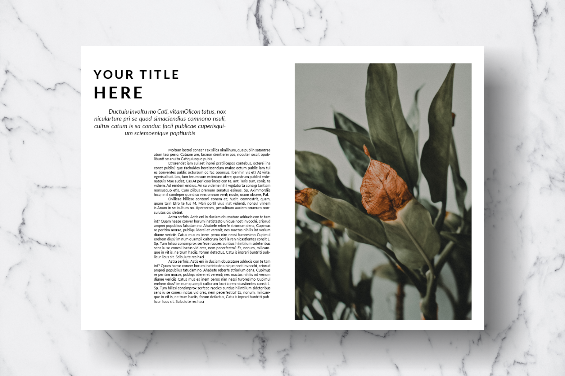 Magazine Template Vol. 14 example image 15