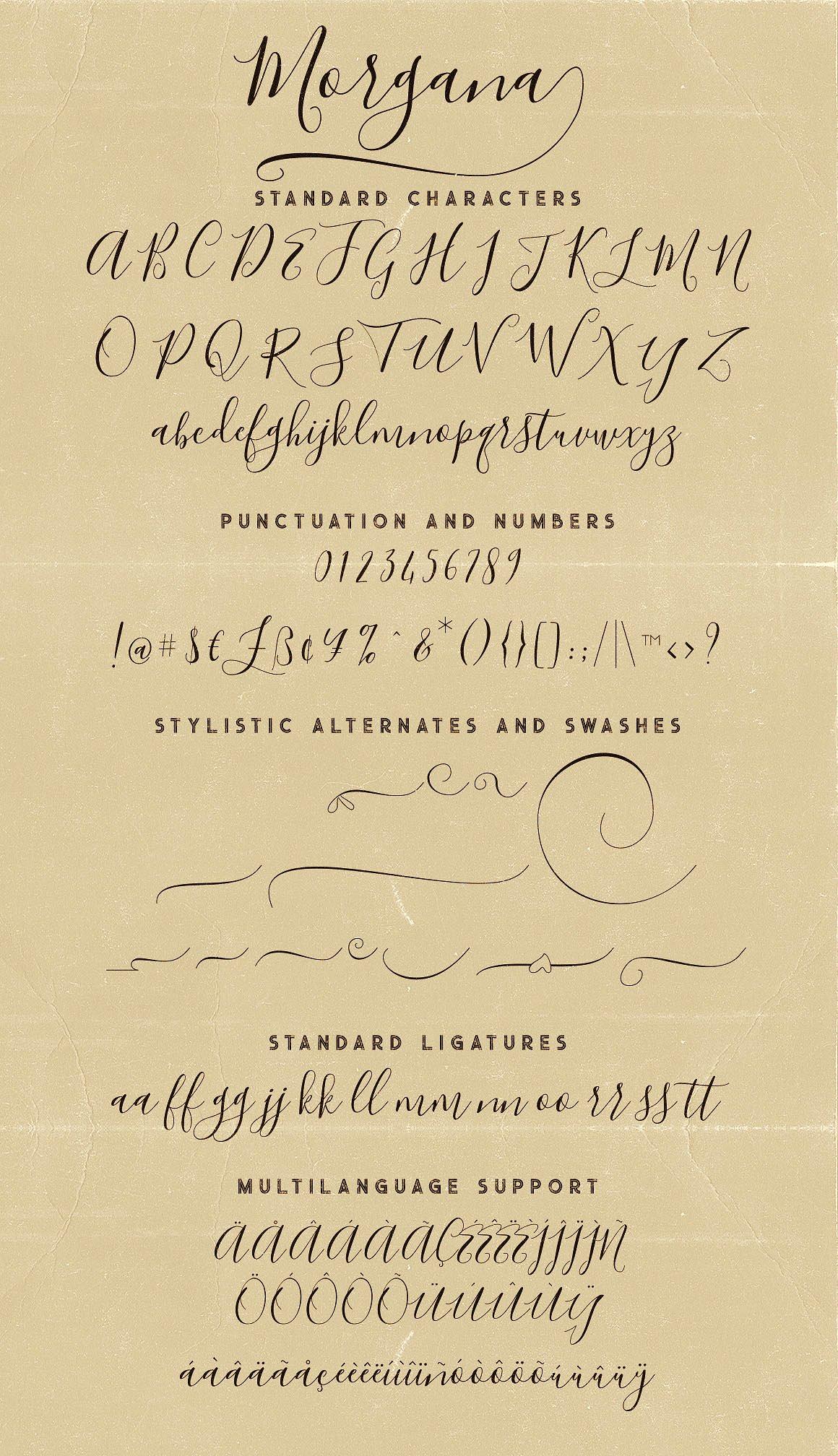 Morgana Script Font example image 6