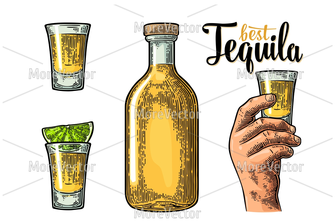 Illustration, pattern and posters Tequila with engraving.  example image 4