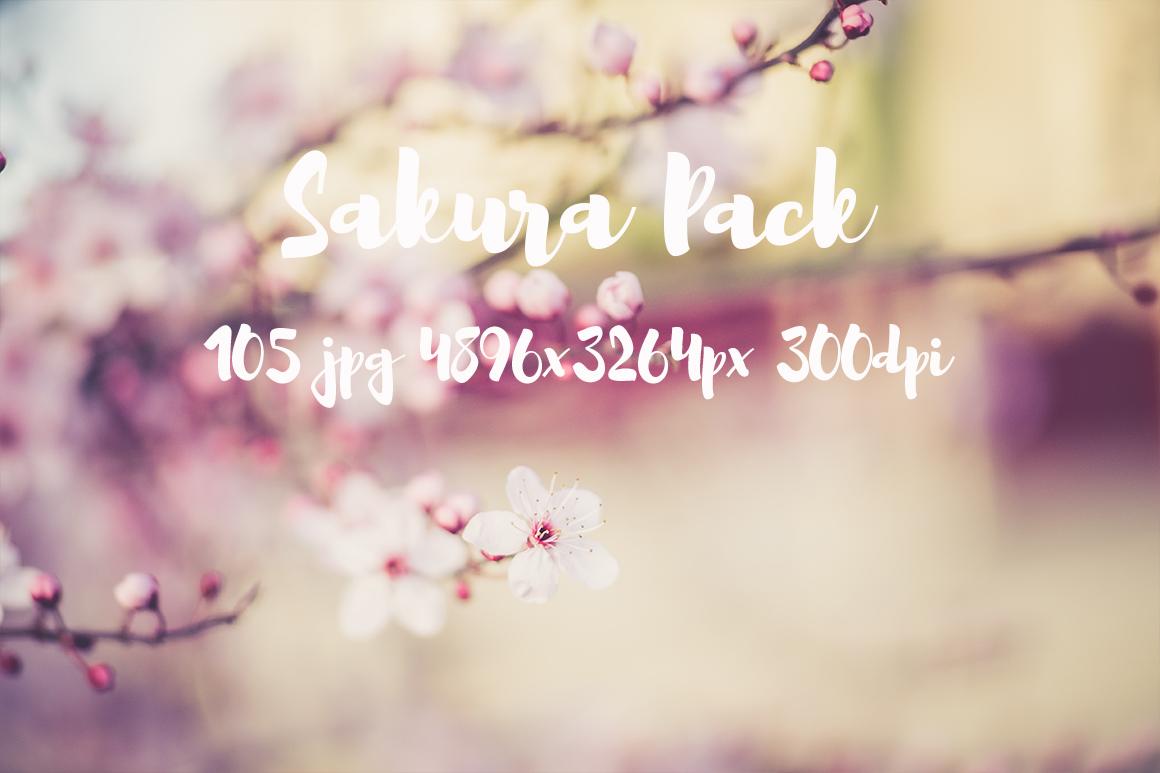 sakura photo pack example image 18