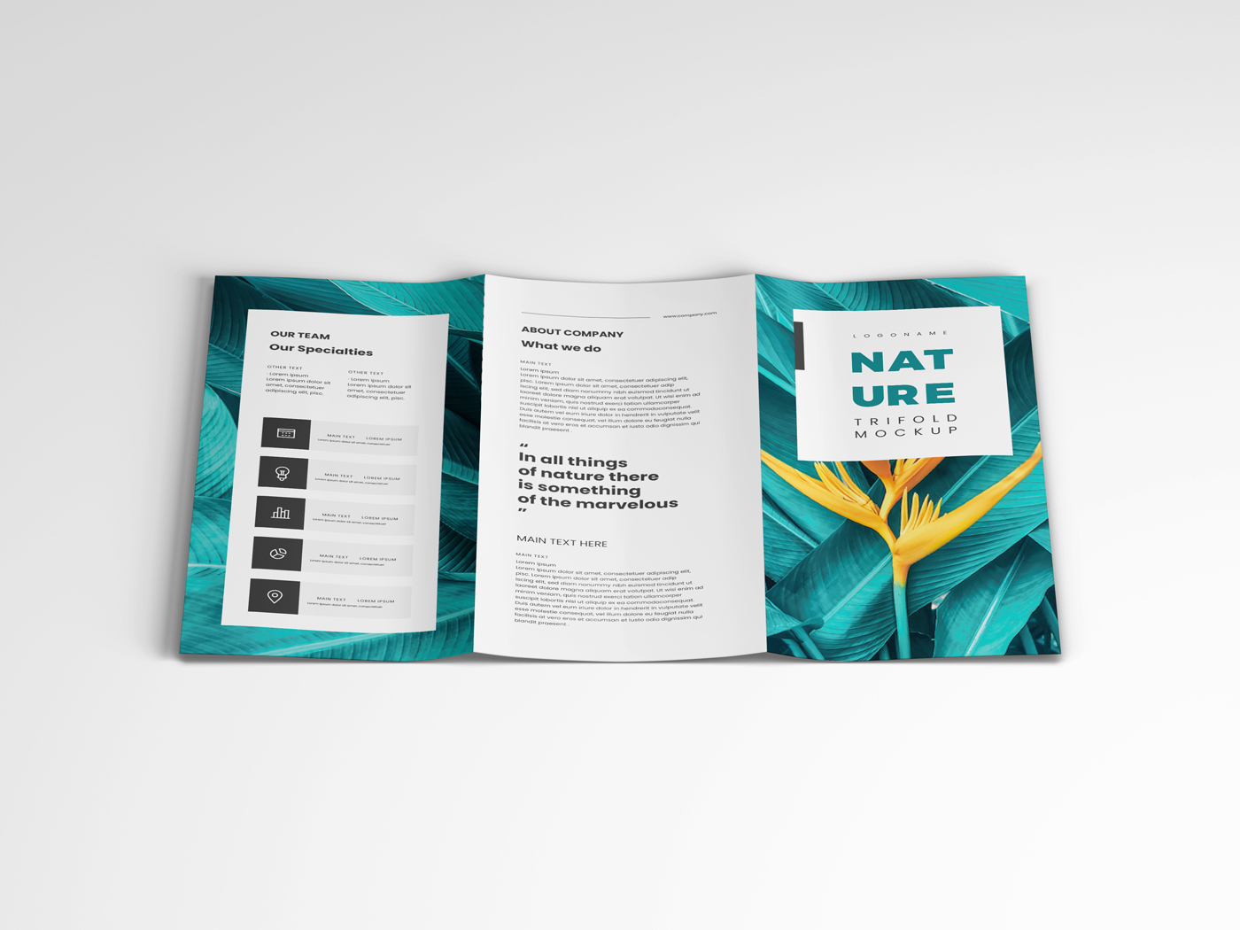A4 Trifold Mockups V3 example image 12
