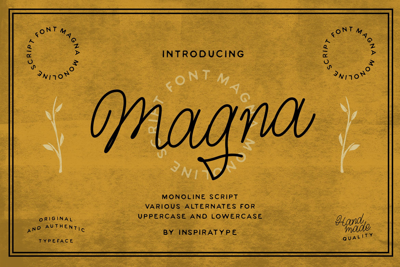 Magna - Monoline Script Font example image 1