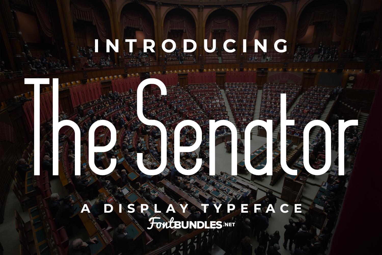 The Senator example image 1
