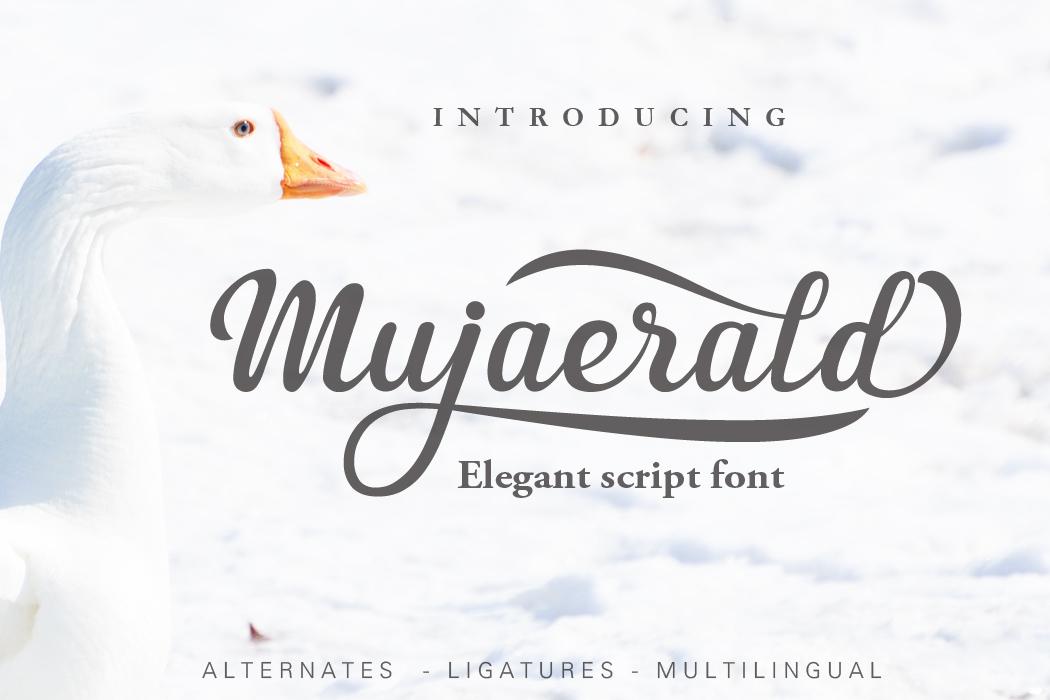 Mujaerald Font example image 1