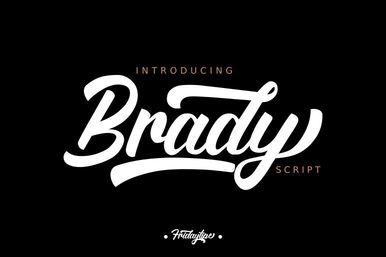 Brady example image 1