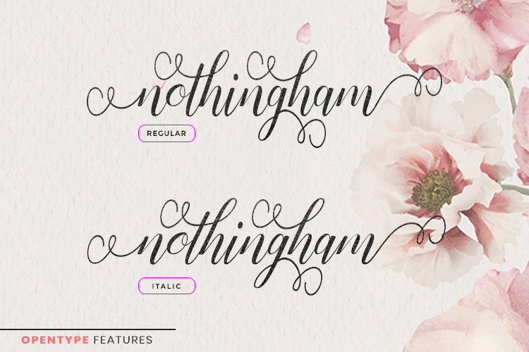 Nothingham Script | Regular & Italic example image 6
