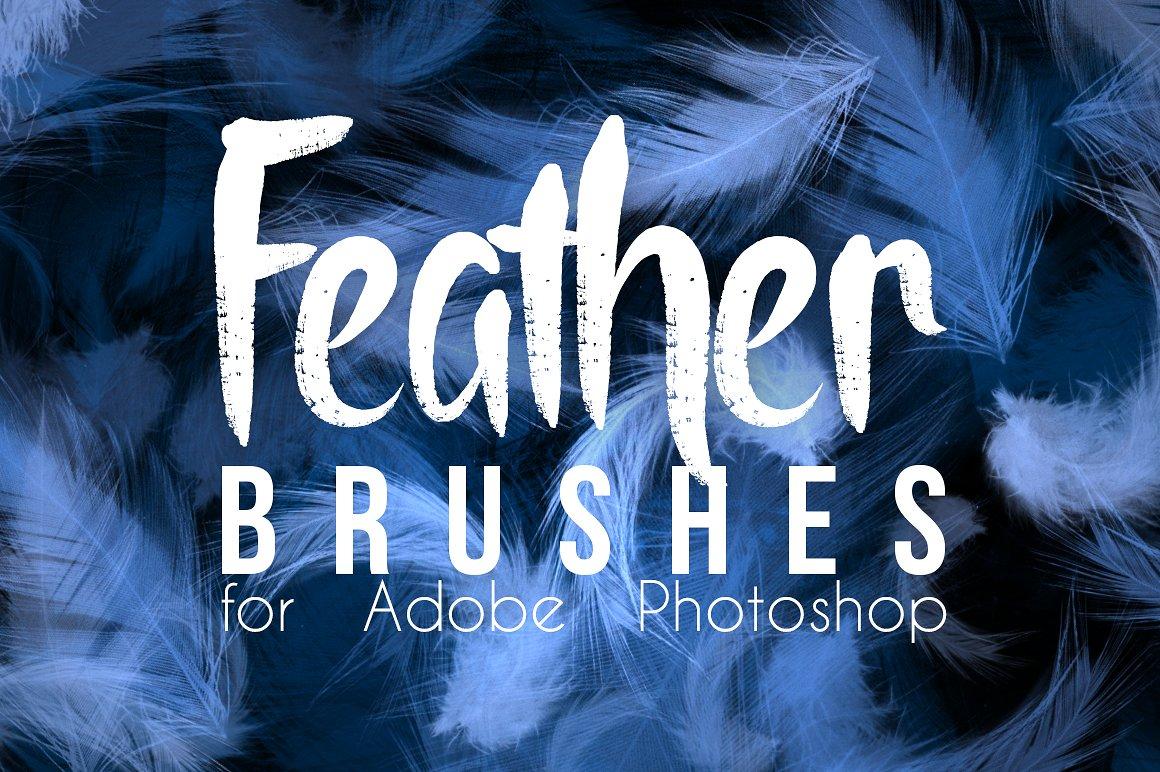 Real Feather Photoshop Brushes example image 1