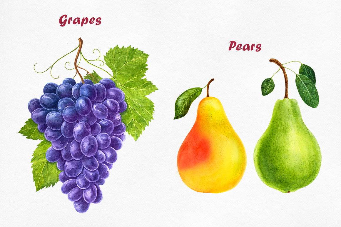 Watercolor Fruits collection example image 4