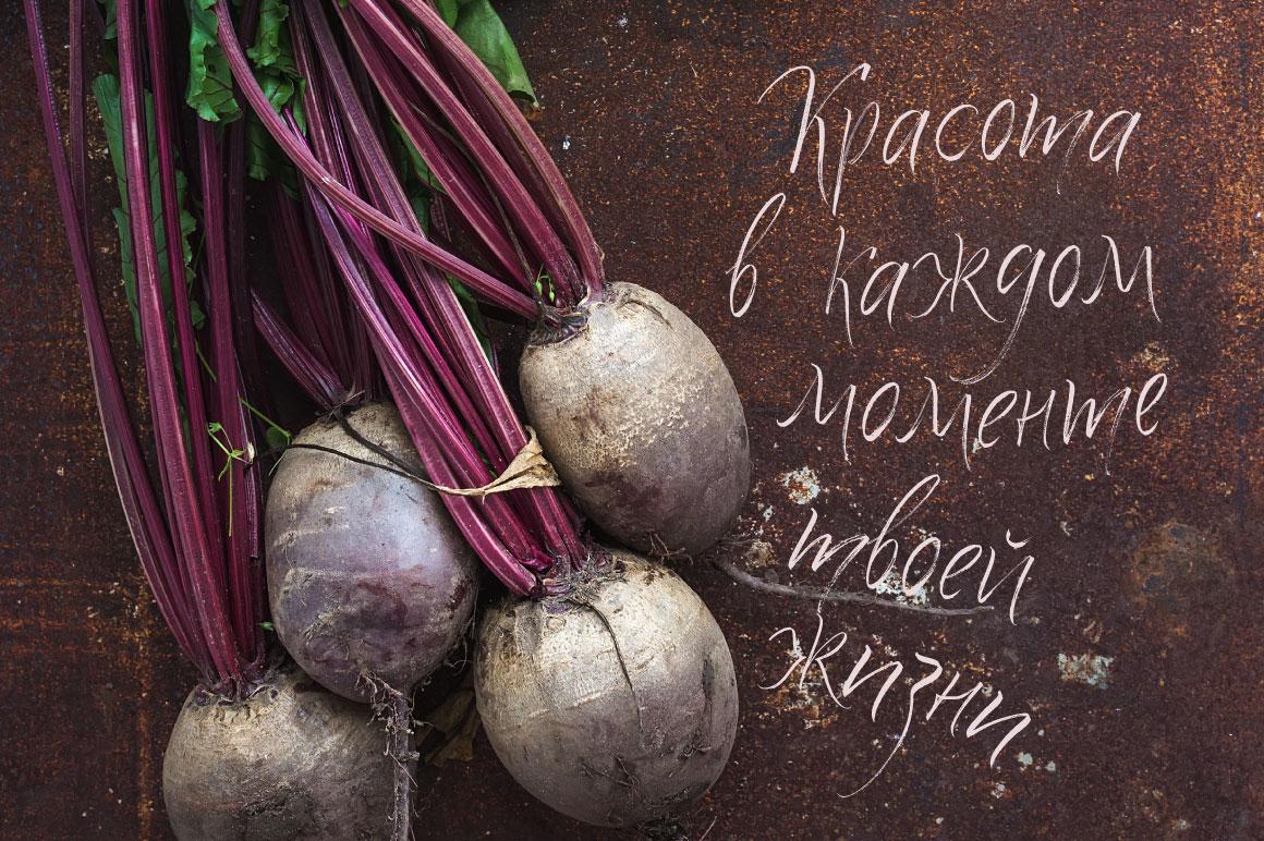 Quick Snack Script Latin & Cyrillic example image 2
