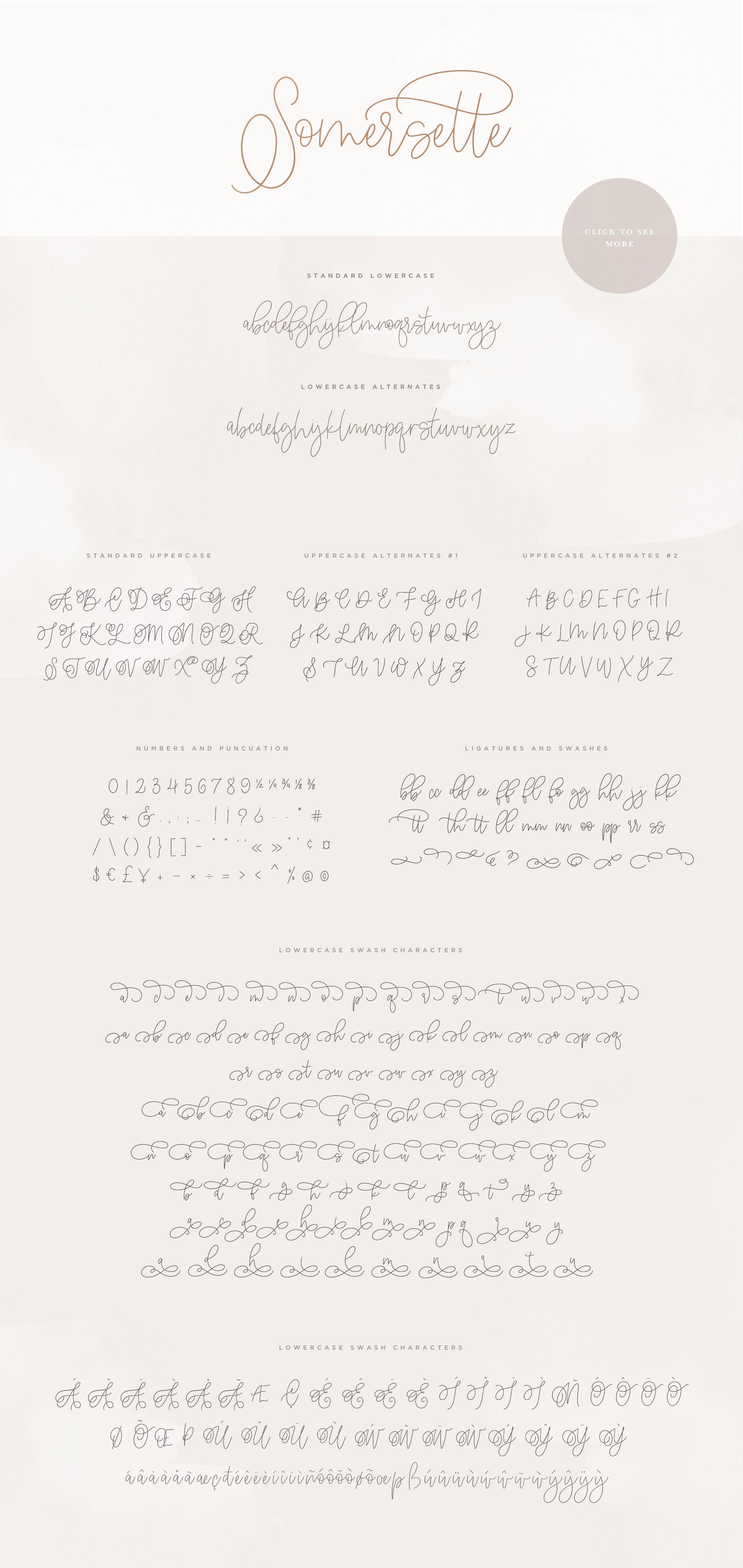 Somersette Script Font example image 10