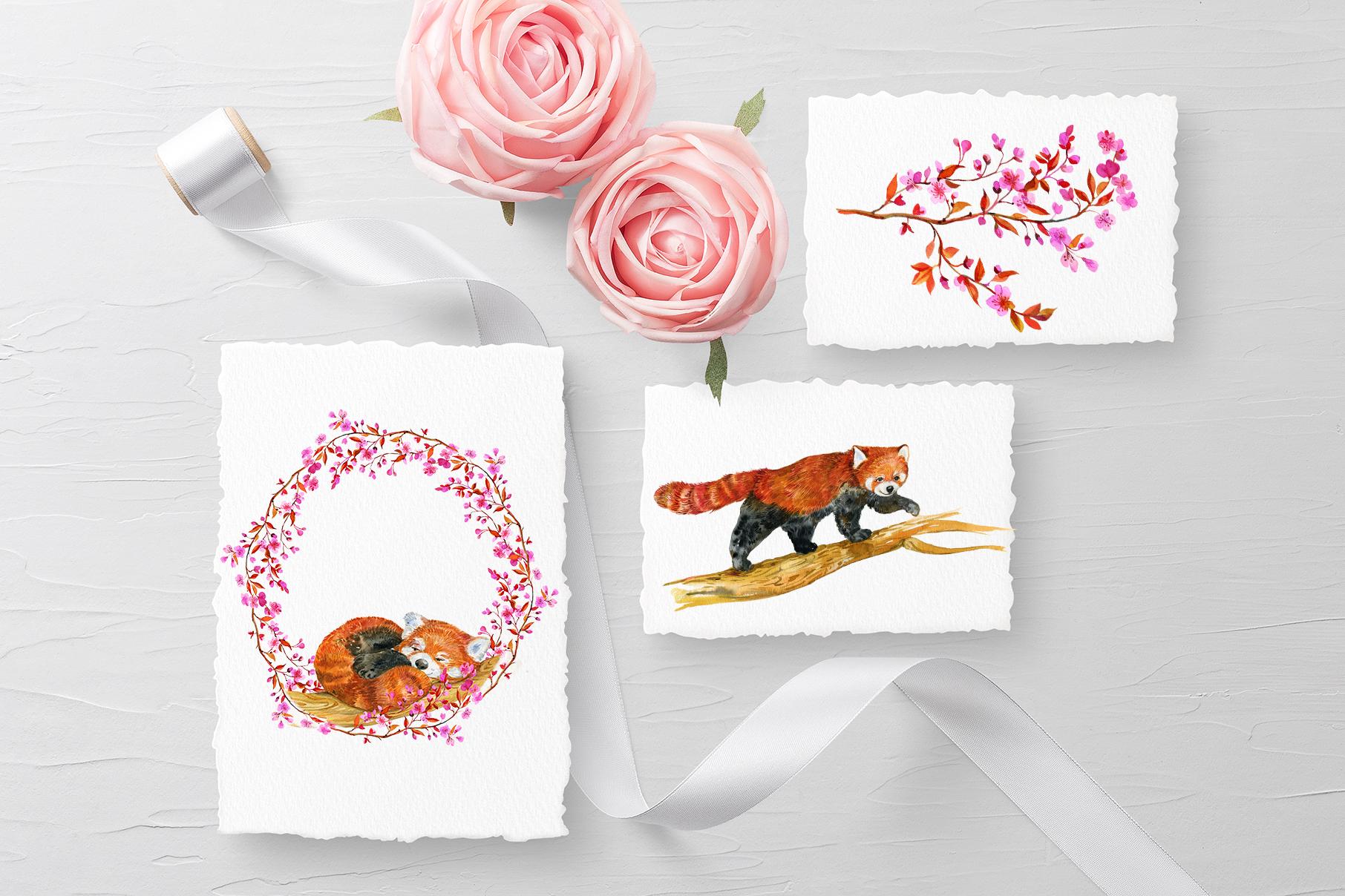 Red Panda ,watercolor illustrations example image 7