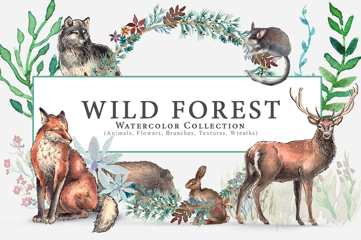 Wild Forest Watercolor Collection example image 1