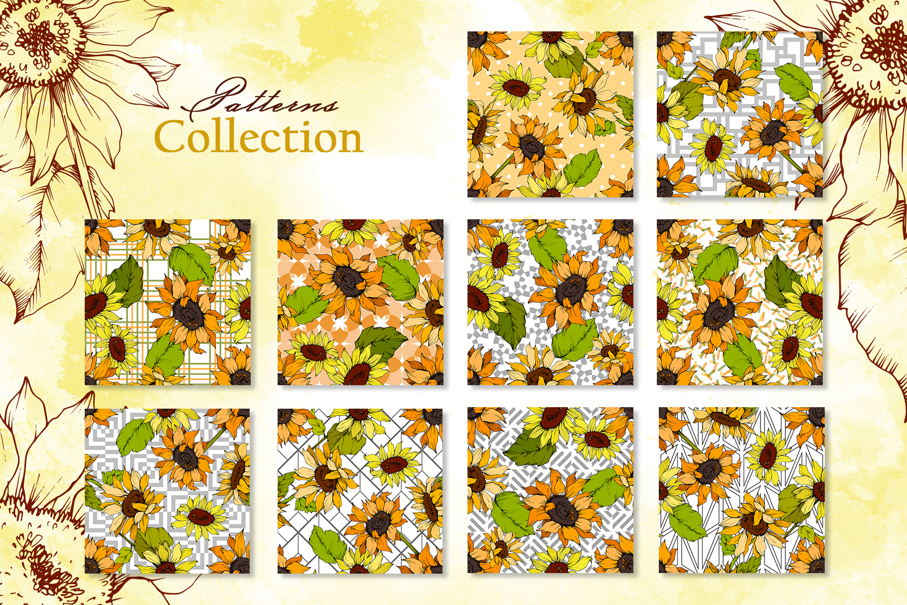 Sunflower Vector Collection example image 5