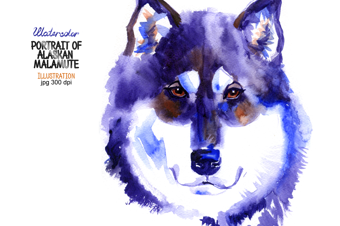 Watercolor Alaskan malamute example image 1