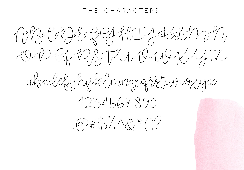 Pink Lemonade - Script Font example image 7