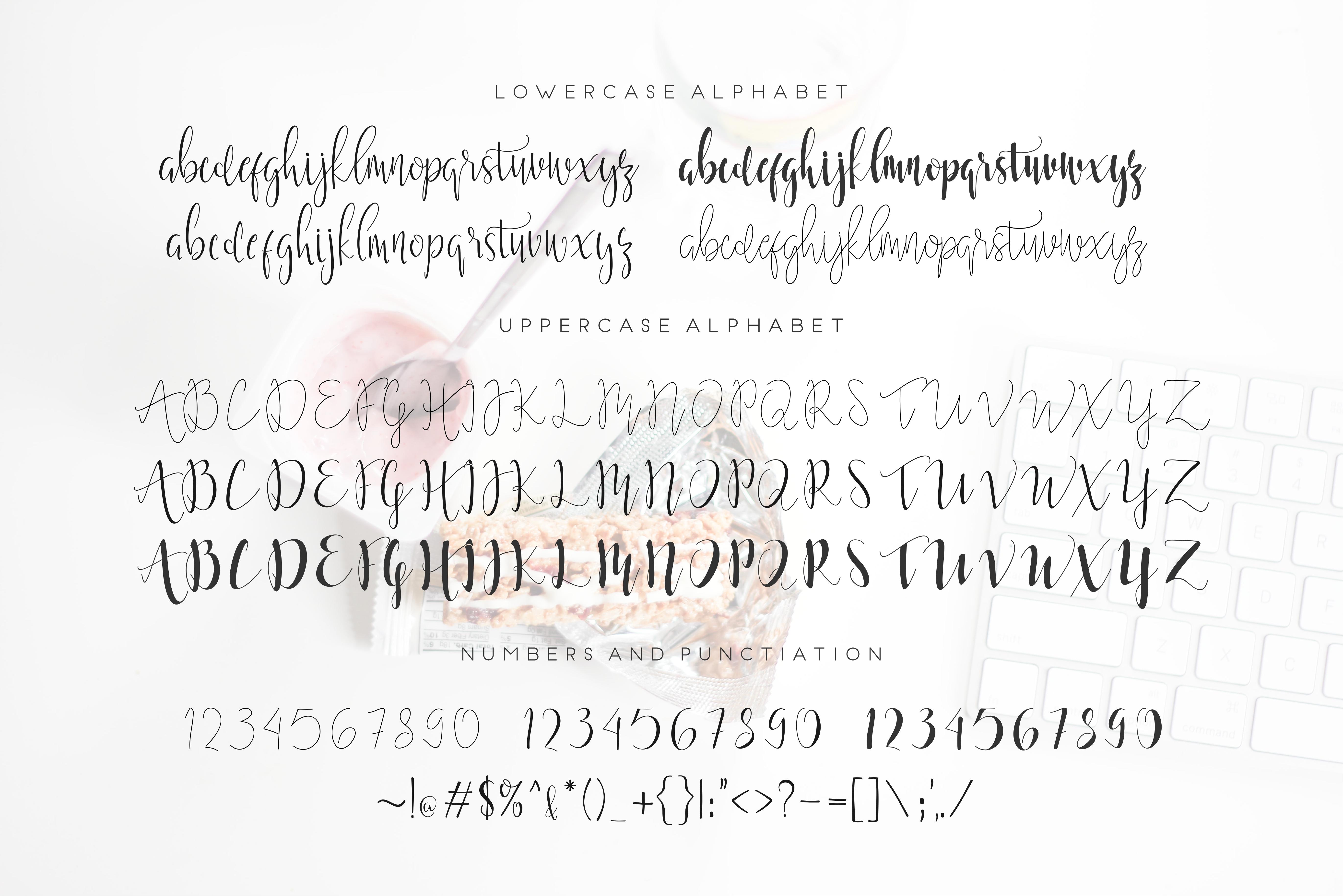 Moonlight Script Font example image 4