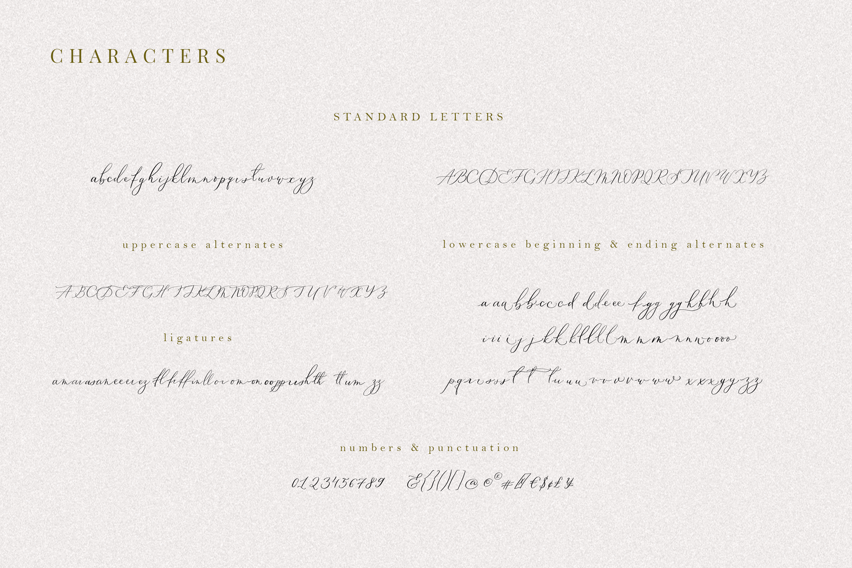 Oriole Bird handwritten font example image 2