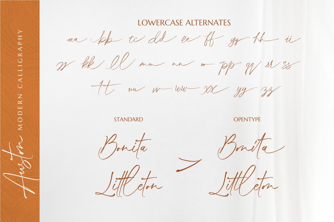 Auston - Modern Calligraphy example image 10