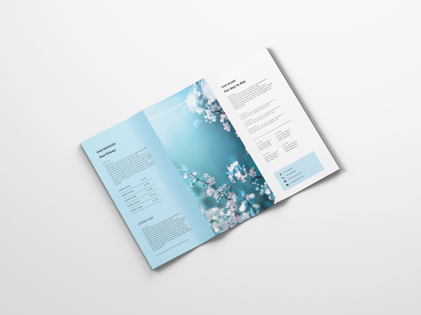 A4 Trifold Mockups V3 example image 3