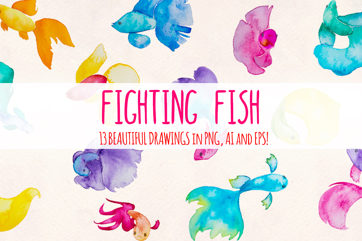 13 Beta Fighting Fish Watercolor Painting Elements example image 2