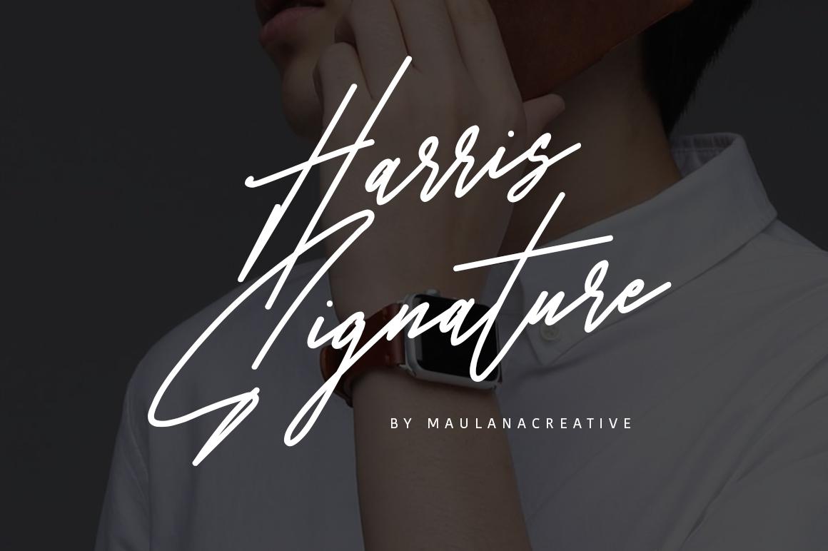 Harris Signature Typeface example image 1