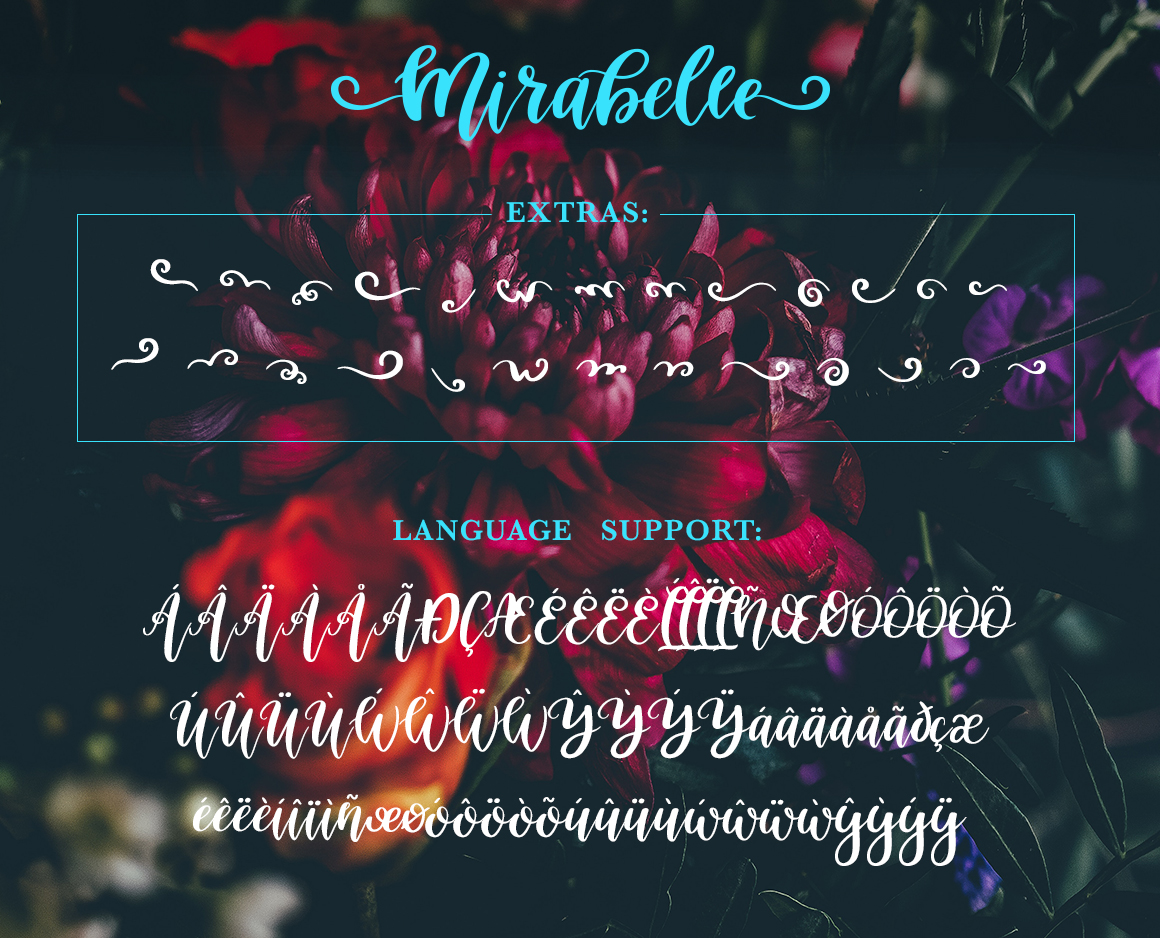 Mirabelle Font with Extras example image 9