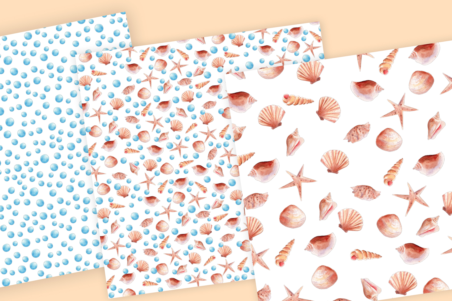 Seashells Clipart Collection example image 6