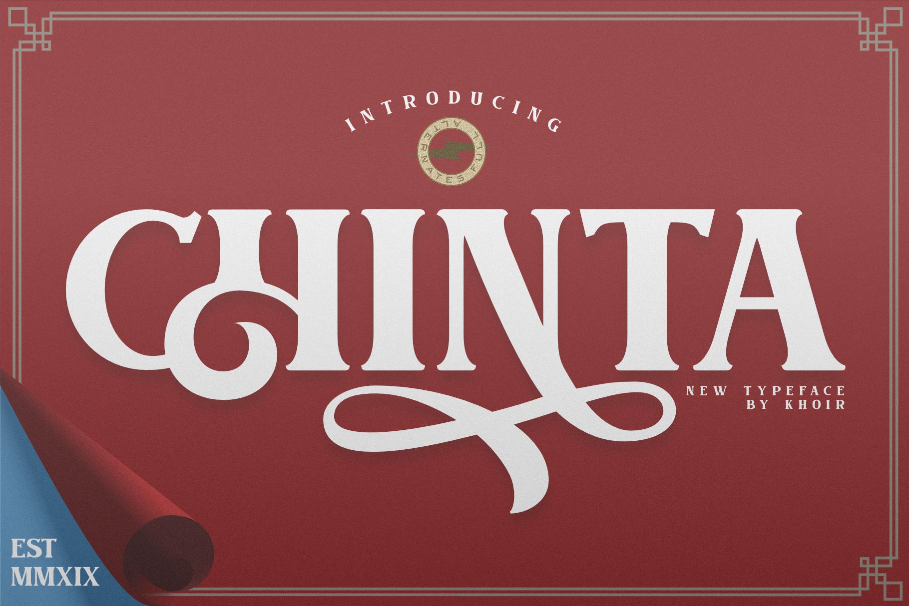 CHINTA example image 1