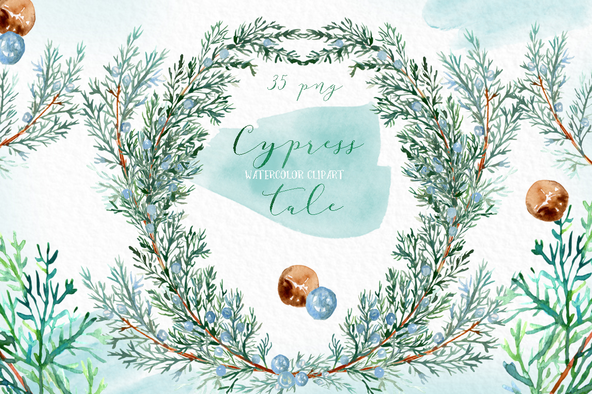 Cypress tale. Watercolor clipart. Cypress christmas branches example image 1