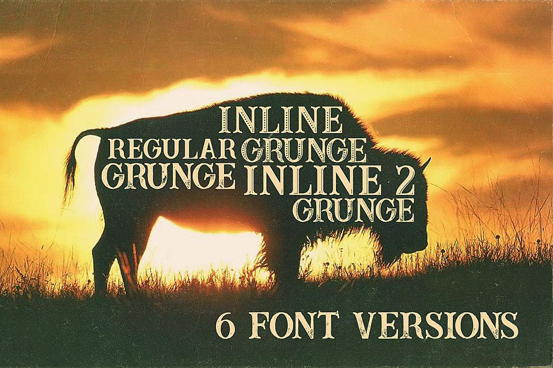 Buffalo Typeface example image 2