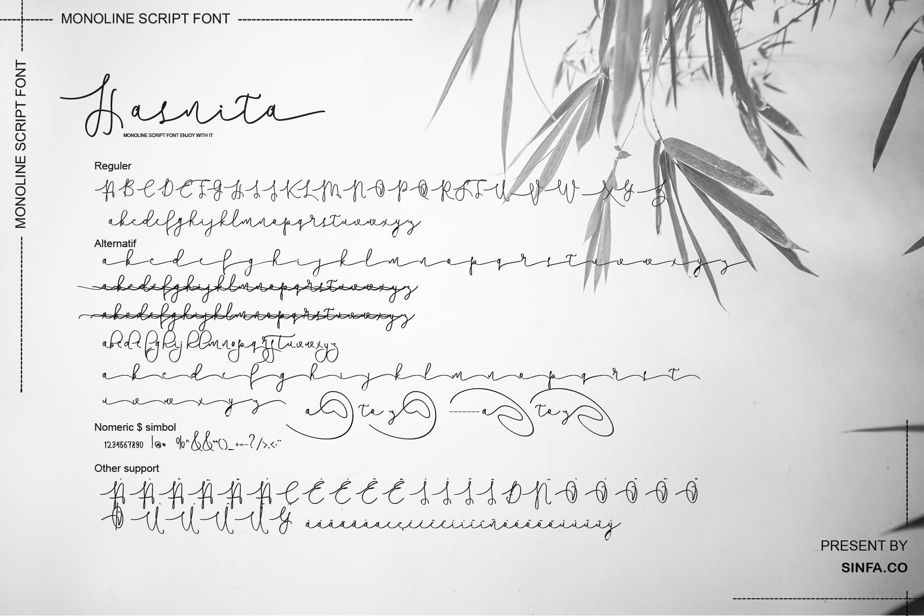 Hasnita example image 7