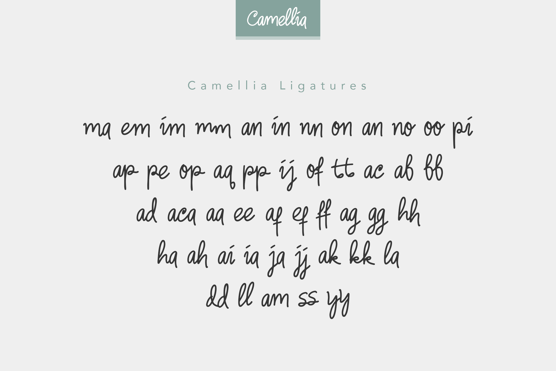 Camellia Handwritten Font example image 10