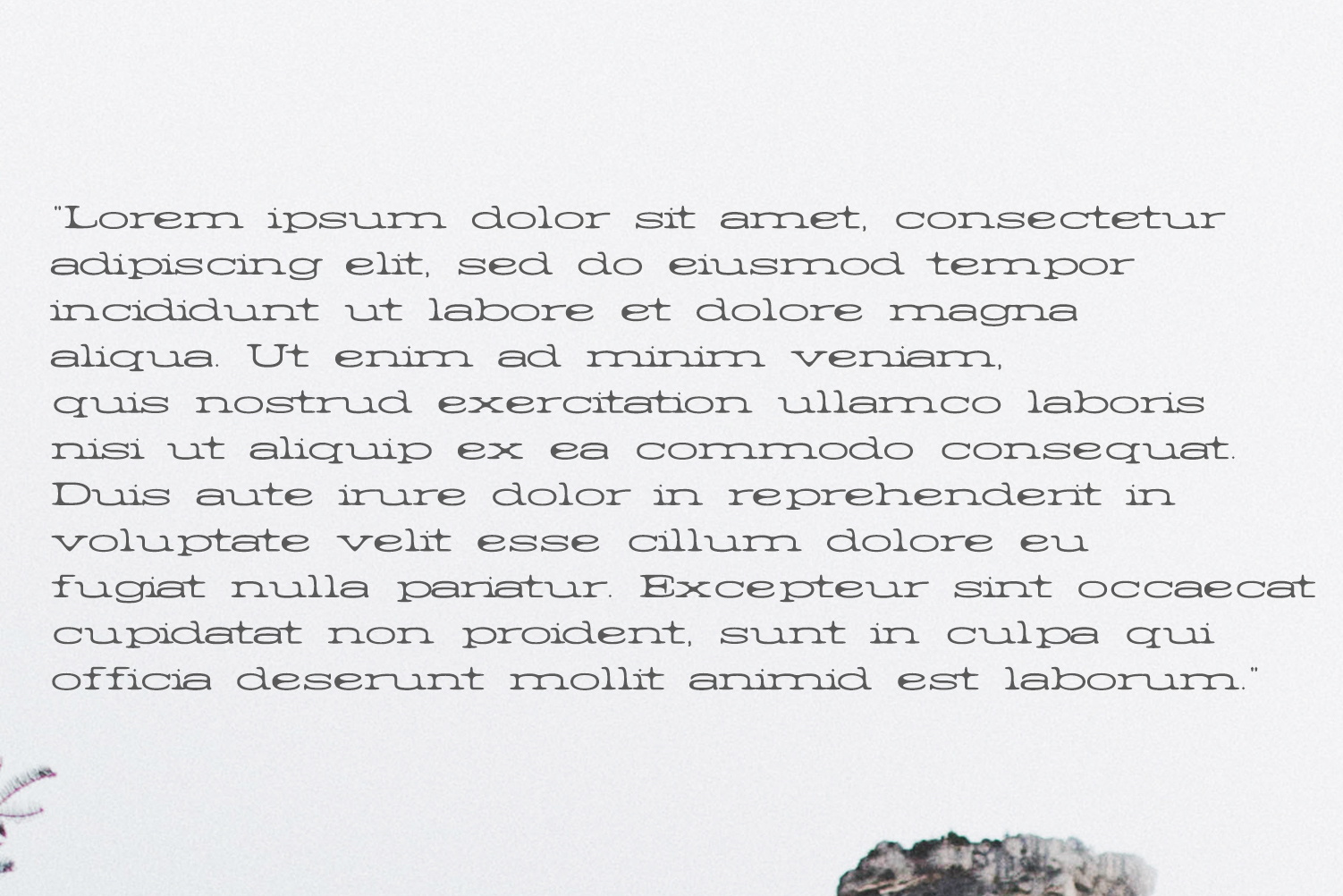 Barric A Serif Font Family example image 6