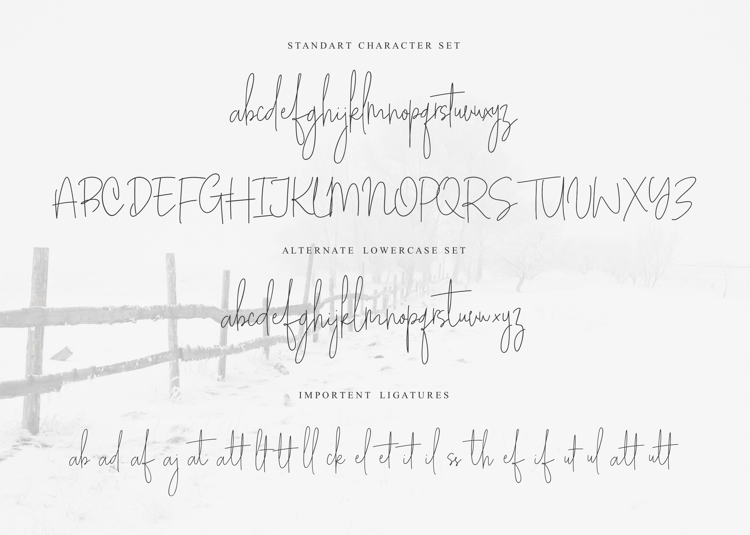 White Apparel | Script Font example image 2