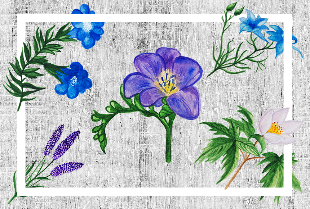 Watercolor Botanical Flowers example image 2
