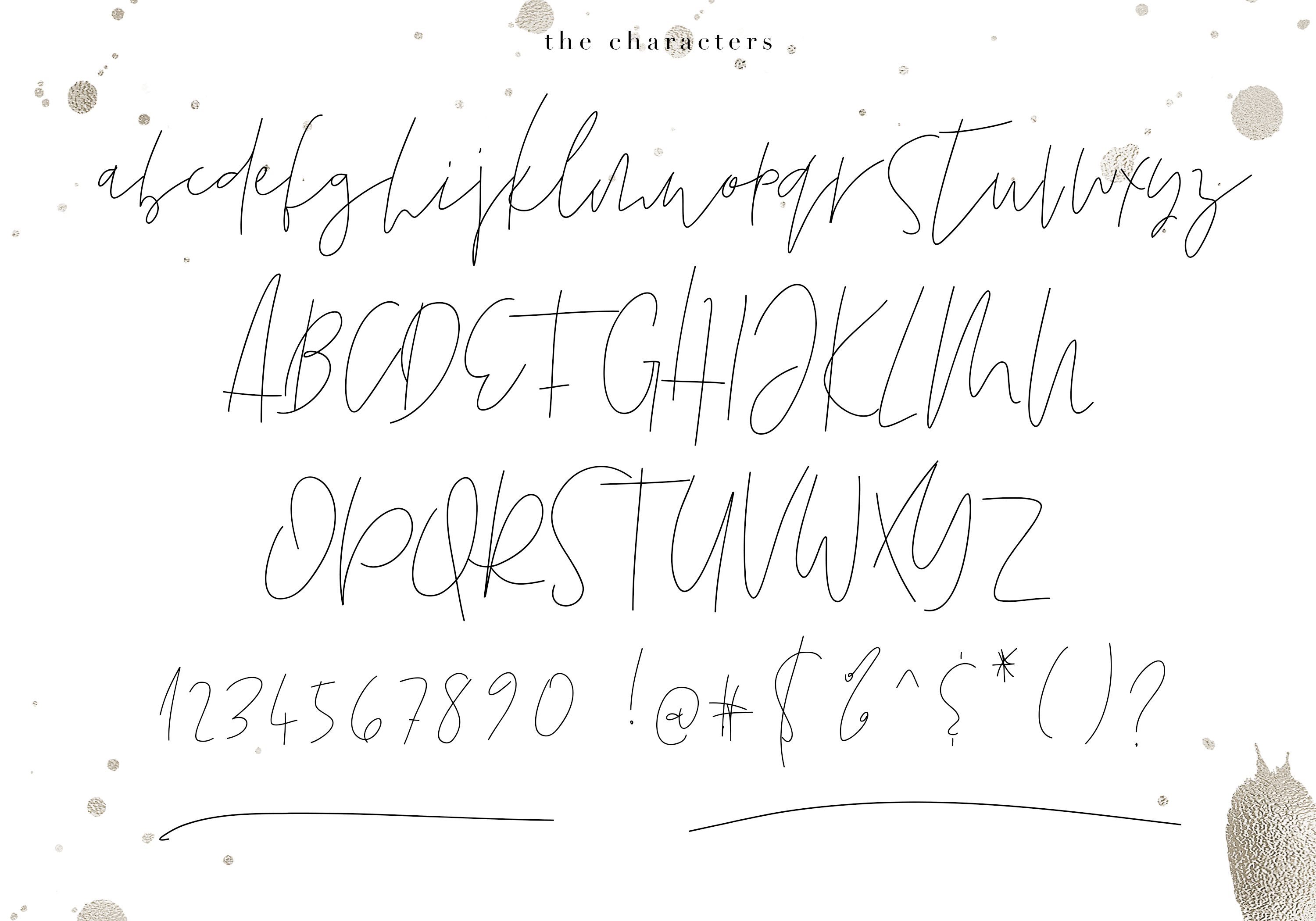 Friday - Chic Signature Font example image 8