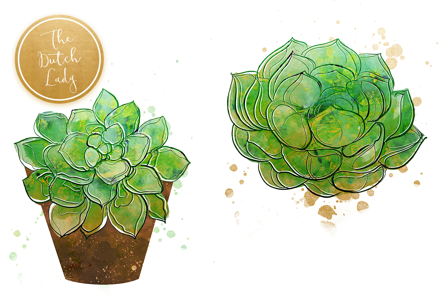 Succulent Potted Plant Clipart Set example image 3