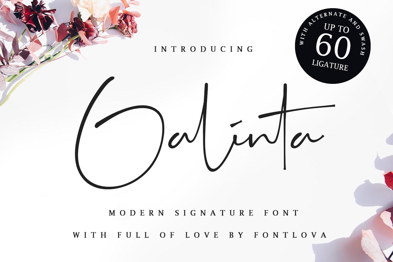 Galinta Signature example image 1