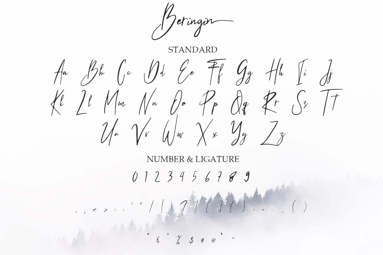 Beringin Stylish Signature Font example image 8