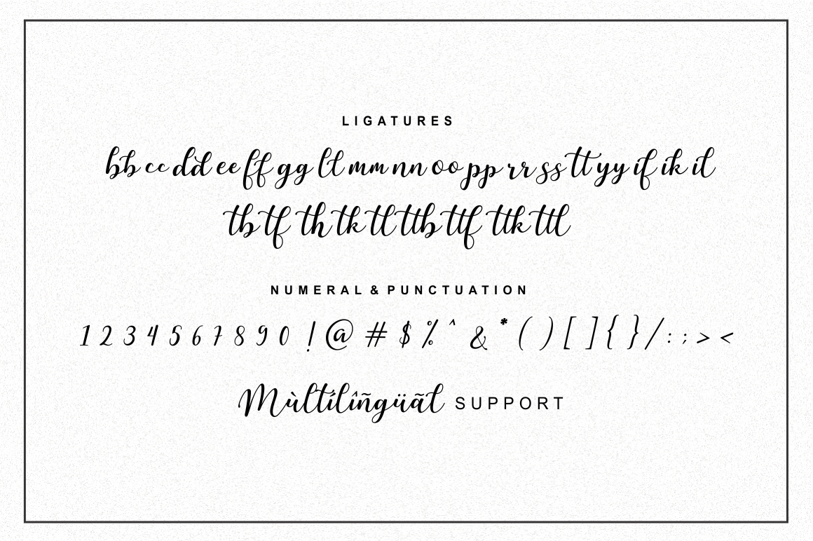 Martinesse - Script Font example image 13