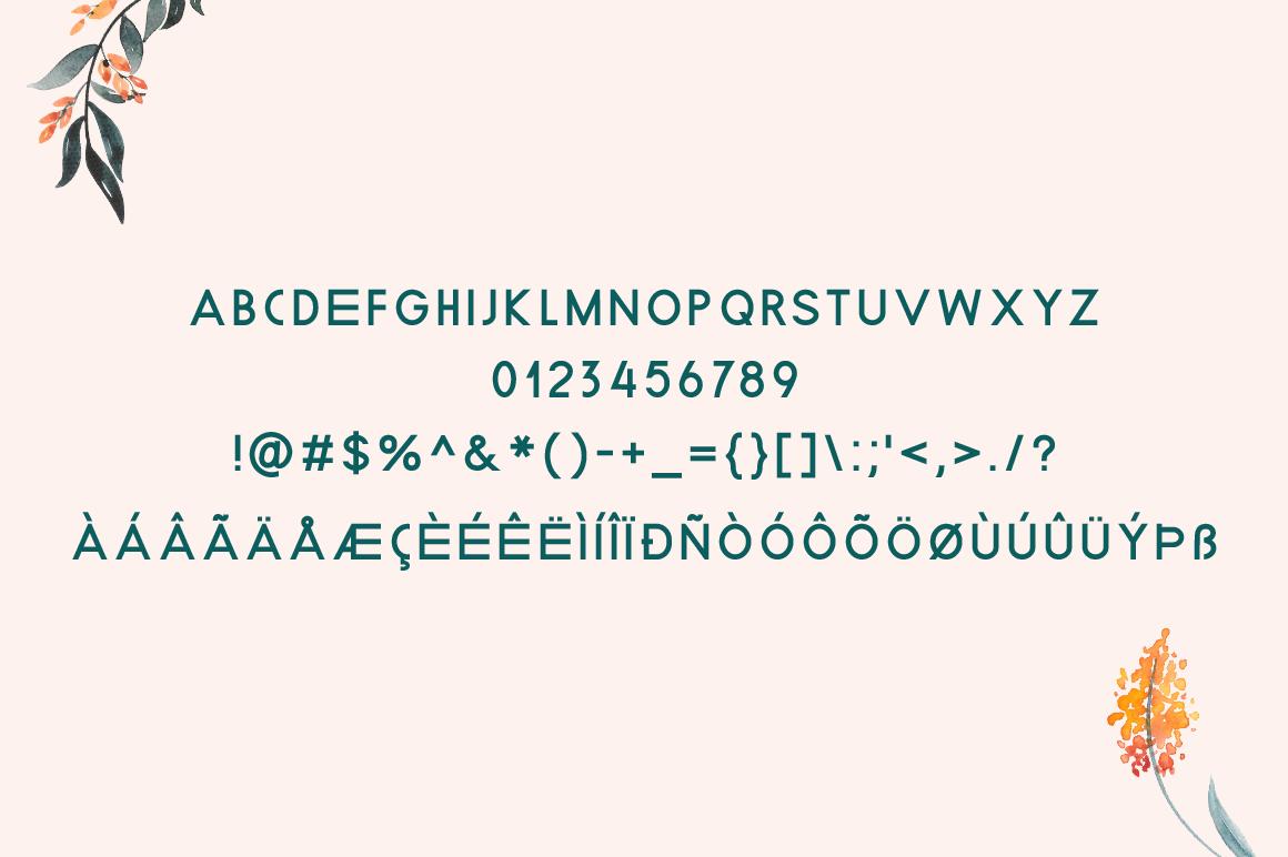 Beecdor example image 5