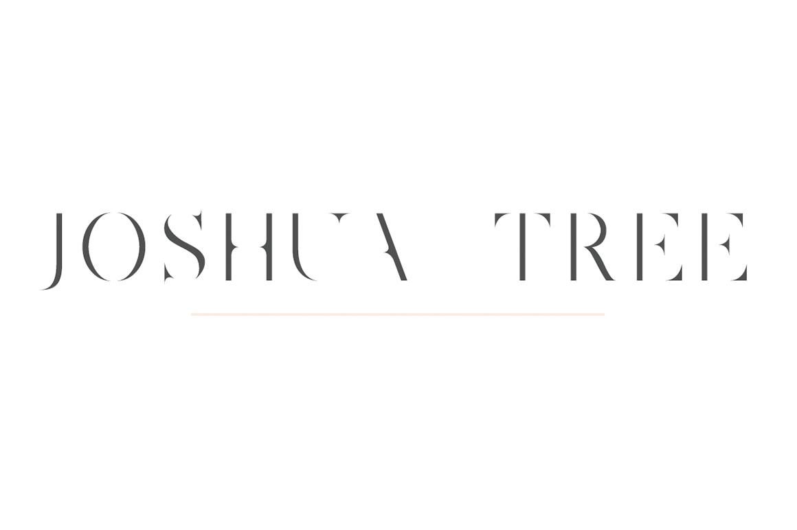 Joshua Tree | A Gorgeous Serif example image 1
