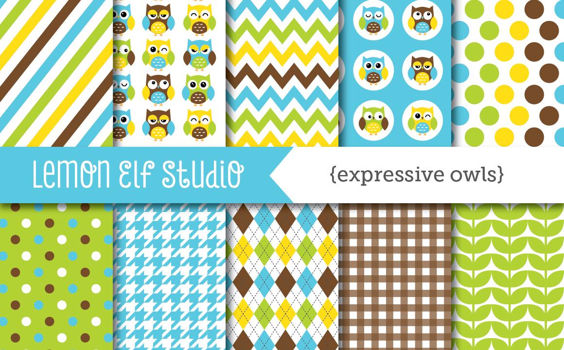 Expressive Owls-Digital Paper (LES.DP02A) example image 1