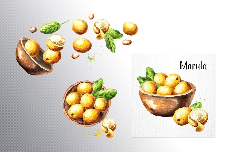 Marula example image 4